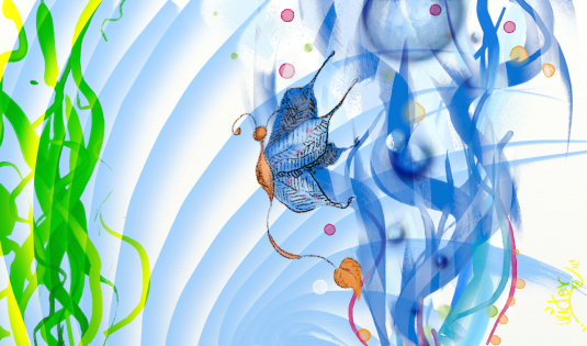 mariposa de agua.png